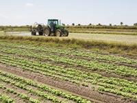 חקלאות קריירה עבודה תעסוקה טרקטור תעשייה / צלם:  פוטוס טו גו